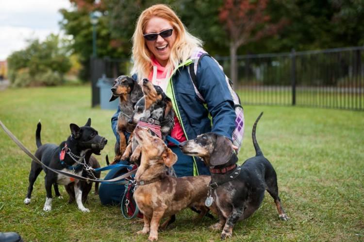 PHOTOS 1 DOG FEST